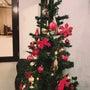 ※クリスマスツリーに…