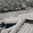 雪の季節がやってきた