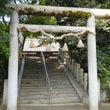 ぶらっとスケッチ:竹…