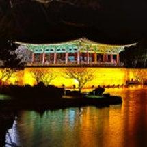 ソウル内の伝統市場紹…