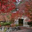 京都亀岡の苗秀寺