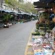 タイの植物祭り201…