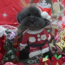 Christmasか…