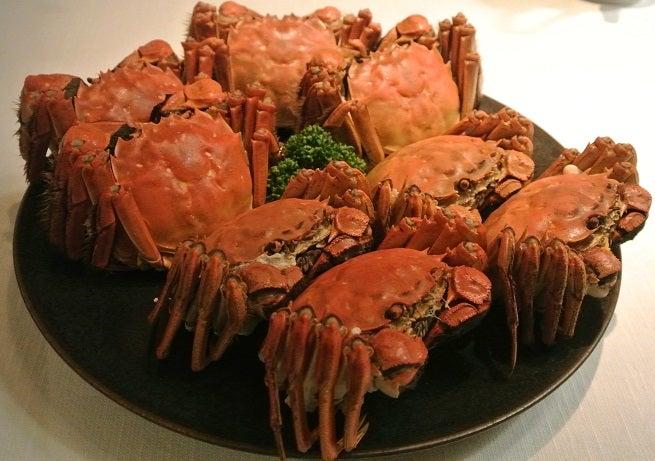 琥珀宮 上海蟹の雄&雌2