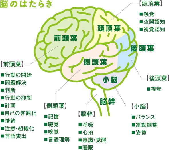 第511話「JEEが高次脳機能障害者雇用における知識養成講習会を ...