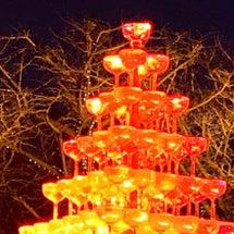 冬の輝きイルミネーシ…