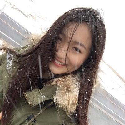 阿蘇・草原の雪景色の記事に添付されている画像