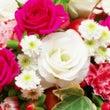 花占い フラワーカー…