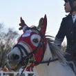馬の学校で障害飛越競…