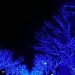 ドライブ~青の洞窟~