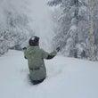 凄い雪❄❄
