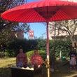 蕨市文化祭   秋の…