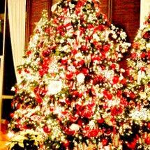 クリスマス直前ウィー…