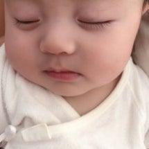 困り顔の寝顔❓の巻