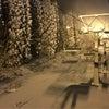 早朝スキーの画像