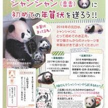 上野動物園のジャイア…