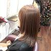SiESTAのミネラルカラーで明るい白髪染め、Y田さん。の画像