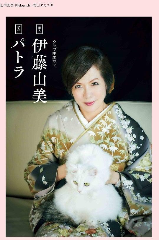 ーテ2018年2月号 犬猫特集 伊藤由美ママ&パトラ画像