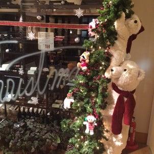 今年一番のクリスマスツリーの画像