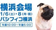 Pet博2018横浜会場 ロゴ