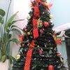 もうすぐクリスマスなので…(`・ω・´)!!の画像