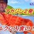 8月27日慶良間船釣…