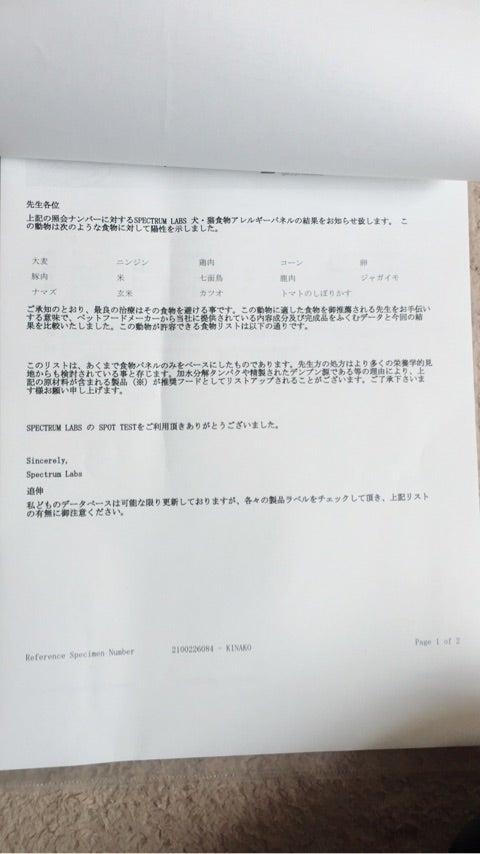 {6A97763F-C6E5-41B8-AB9C-B18251135C94}
