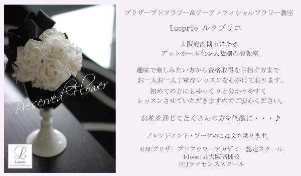 osaka/takatuki/kyoto/maizuru/pureserved/lucprie