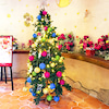 箱根のクリスマス♪の画像
