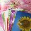 GW4月29日誕生花セラピー入門アドバイザー認定講座開講いたします!!の画像