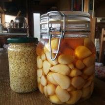 ニンニクと生姜の保存…