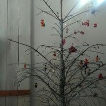 今年のツリーとケーキ…