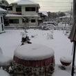 〜〜冬休み〜〜ありが…