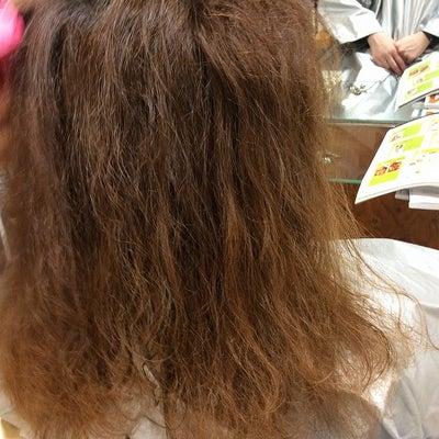 シャンプーでクセ毛が無くなるのか?の記事に添付されている画像