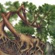 【絵画】螺旋樹(爆烈…