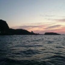 下田から船ワラサ釣り…