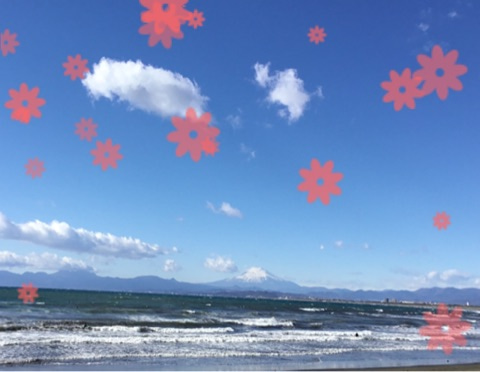 o0480037214100086250 - toiro ♪戸塚