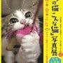 猫の日イベント開催中…