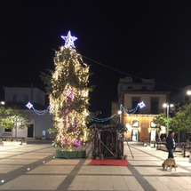 Buon Natal…