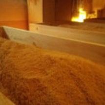 ヒノキ酵素温浴効果