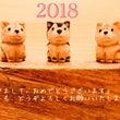 2018年も木彫りを…