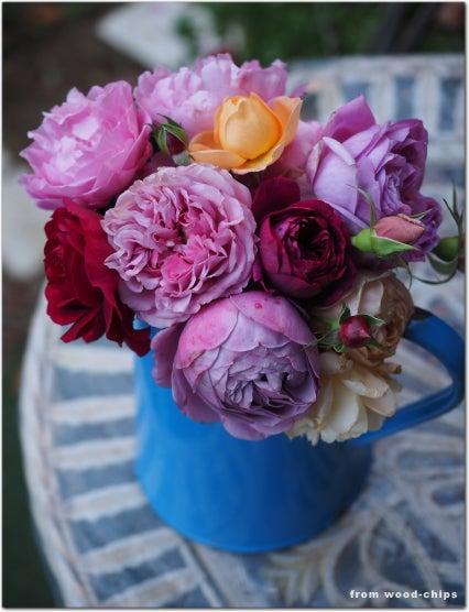 薔薇の切り花