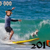 2018年 新年。。…