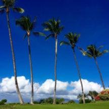 ハワイのビーチと海は…