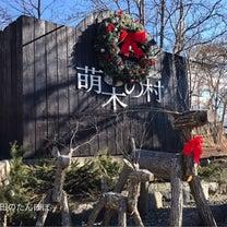 萌木の村のクリスマス〜⭐️の記事に添付されている画像