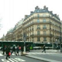 パリのカモメ達