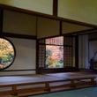 秋の京都 日帰り紅葉…