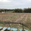 収穫シーズン終了の画像