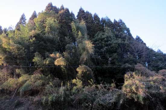 【写31】野尻城