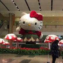 またまた日本へ〜〜